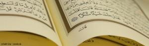 Die (un-)lustige Welt des... Salafismus